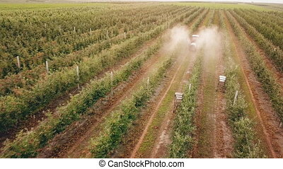 apple tree spraying with a tractor - spraying of apple trees...