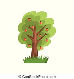 Apple tree vector Illustration on a white background