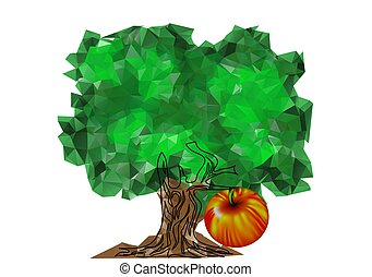 apple tree with apple fruit