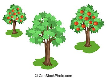 Apple Tree with Green Leaves and Red Fruits Set