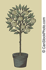 Apple tree woodcut - Woodcut style decorative apple tree in...