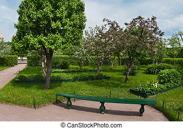 Apple trees garden in spring time. Bench near a tree. Nobody