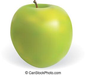 Apple - Detailed illustration for apple