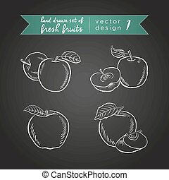 Apple. Vector hand drawn collection of sketch fresh fruits ...