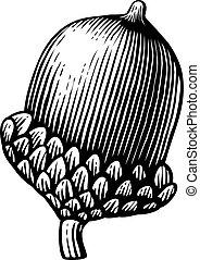 apple - vintage engraved vector illustration (hand drawn style)