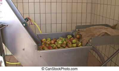 Apple wine press - Apples in water moving in winepress