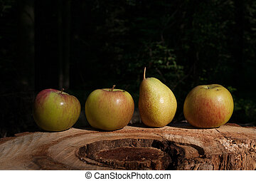 Apples and pears on the stump in the garden