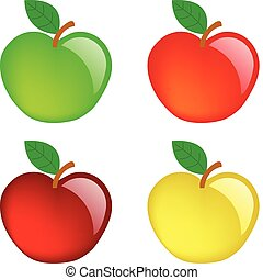 Apples - Apple illustration - vector