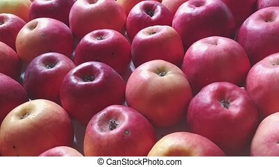 Apples background camera moving diagonally with sun beams...
