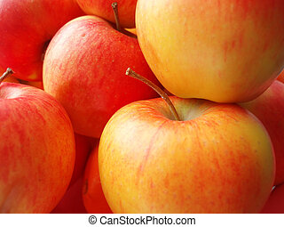 Apples - Background of red green and yellow apples