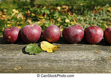 apples in a row on a wooden board