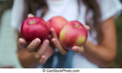 Apples in the hands of the girl close-up