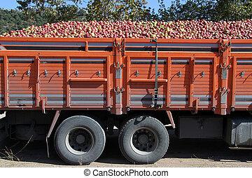 Apples in truck