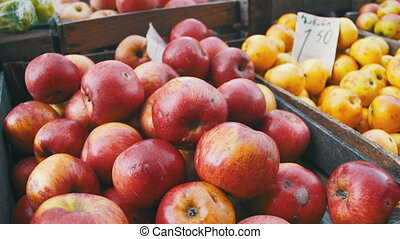 Apples on the Counter in the Store. Trade