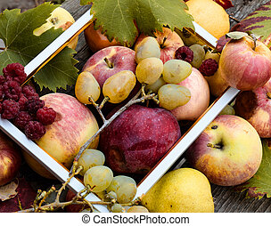 Apples, pears, red raspberries and white grapes on a wooden background with white frame. Top view