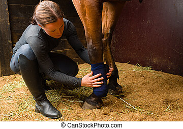 Apply bandages - Woman installs bandages for the horse in ...