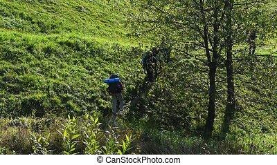apprécier, confection, montagne, rocheux, nature, groupe, marche, étapes, pieds, terrain, randonneur, été, gens, grass., haut, outdoors., montagnes, randonnée
