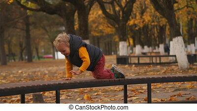 apprécier, parc, insouciant, enfance, week-end, sourire, peu...