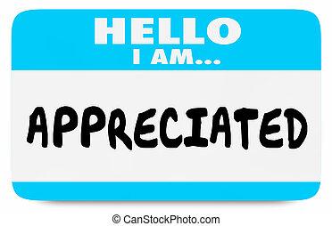 Appreciated Recognition Hello Name Tag 3d Illustration