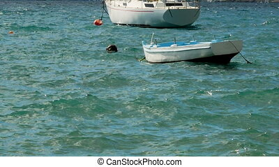 approached a white wooden boat with orange buoy in the water