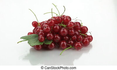 Approaching a pile of red currants on a white background.