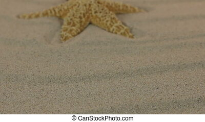 Approaching of a yellow star lying on sand dunes.
