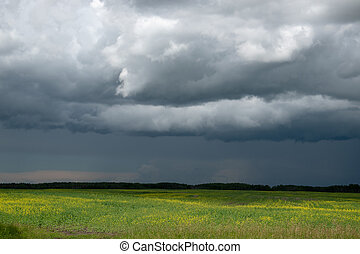 Approaching storm clouds above a canola field, Saskatchewan, Canada.