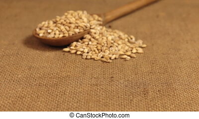 Approximation of a wooden spoon overflowing with pearl barley grains, lying on burlap.
