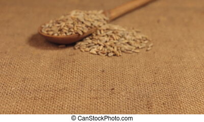 Approximation of a wooden spoon overflowing with rye grains, lying on burlap. Dolly shot.