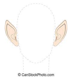 appuntito, orecchie