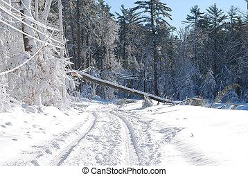 après, arbre, bizzard, gigantesque, baissé, route