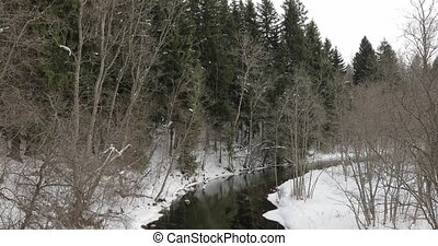 après-midi, rivière, hiver, forêt