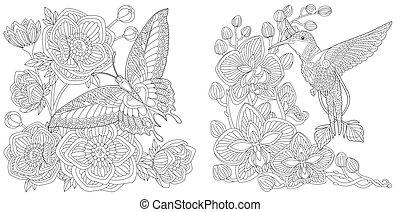 apródok, kolibri, lepke, színezés