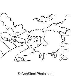 apródok, sheep, vektor, színezés