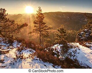 apreciar, rochoso, nevado, primavera, sobre, árvores, rastro, trough, montanhas., vista