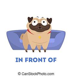 aprendizagem, concept., pug, preposition, animal, frente, travesseiro