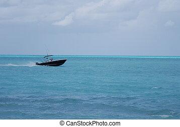 apresure barco, en, caribe, aguas