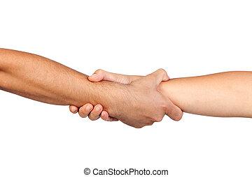 apretón de manos, de, amistad