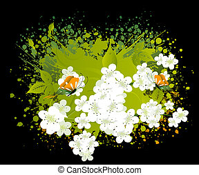 blossoms Illustration - apricot and Cherries blossoms...