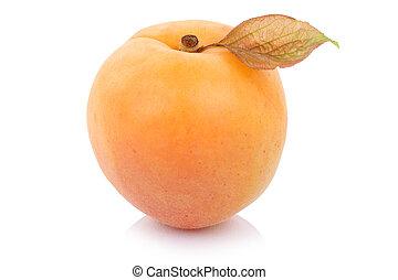 Apricot fresh fruit isolated on white