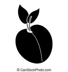 apricot fruit nutrition pictogram