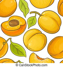 apricot fruit vector pattern
