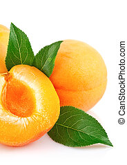 apricot fruits with green leaf