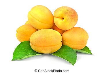 Apricot. Group of fruit isolated on white