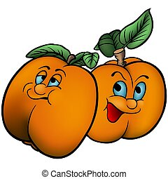 Apricot - Highly detailed and coloured cartoon illustration