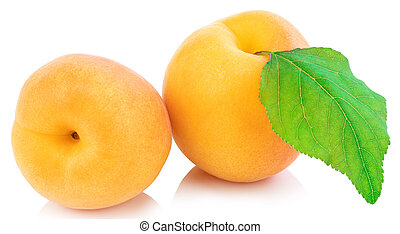Apricot isolated on white background. Clipping Path