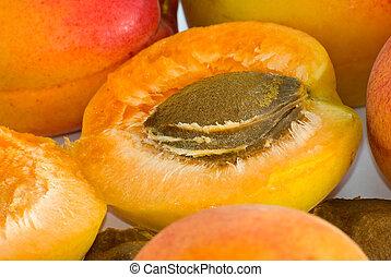 Apricot nucleus