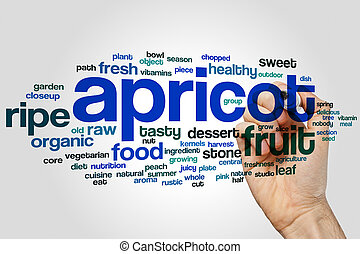 Apricot word cloud concept on grey background