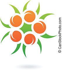 Apricots and Leaves Abstract Icon