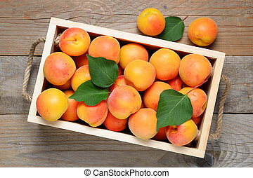 Apricots in wooden box top view